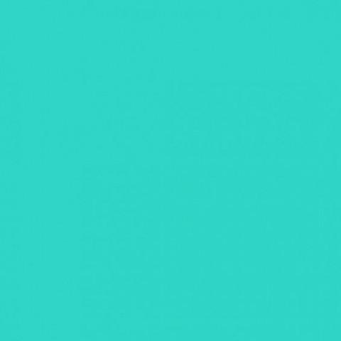 Глянцевые натяжные потолки Бельгия светло-зеленый L 628