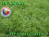 Семена, Укроп ранний, ГАНАК /HANAK, 50 грамм фермерский проф. пакет, SEMO (Чехия), фото 4