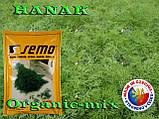 Семена, Укроп ранний, ГАНАК /HANAK, 50 грамм фермерский проф. пакет, SEMO (Чехия), фото 2