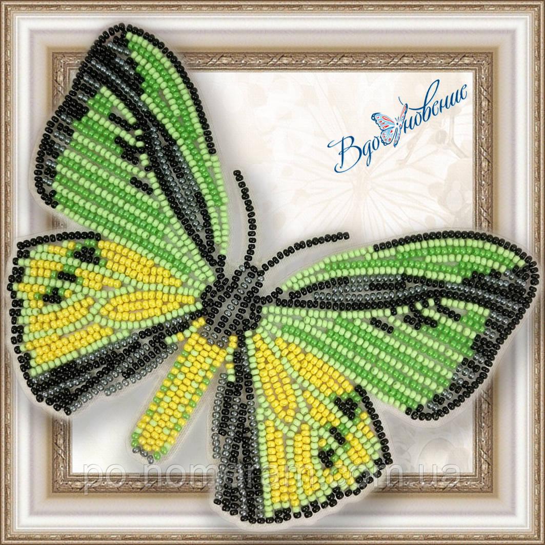 Бабочка из бисера вышивка на пластиковой основе Птицекрыл Голиаф (BGP020)