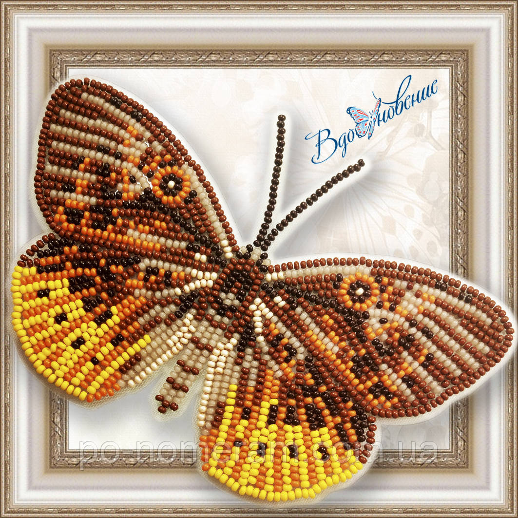 Бабочка из бисера вышивка на пластиковой основе Eurybia Juturna (BGP054)