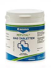 Canina Petvital GAG Tabletten 600 глюкозамин с экстрактом мидии