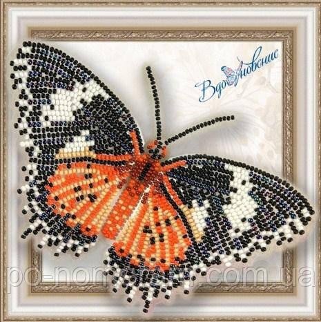 Бабочка из бисера вышивка на пластиковой основе Цетозия Библс (BGP005)