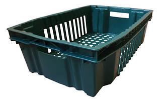 Ящики пластиковые для фруктов и овощей