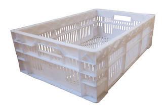 Ящики пластиковые для хлебобулочной продукции
