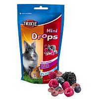 Витамины Trixie Mini drops для грызунов, с лесными ягодами 75г
