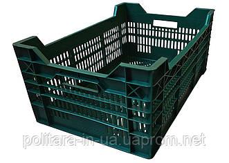 Ящик для птицы цветной 600x400x260