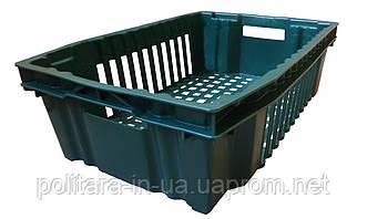 Ящик пластиковый конусный пищевой 600x400x180 цветной