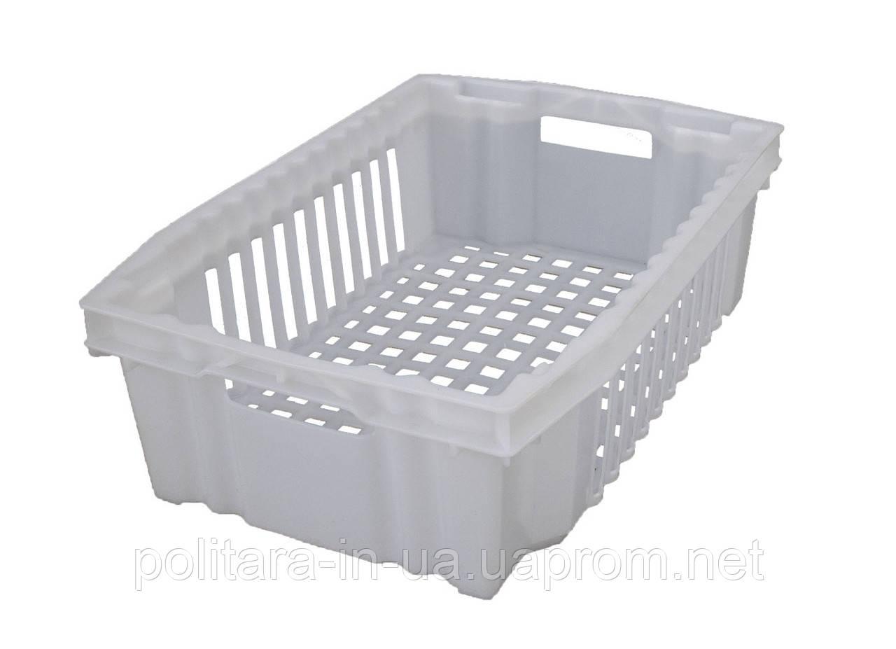 Ящик конусный для продуктов 600х400х180 белый