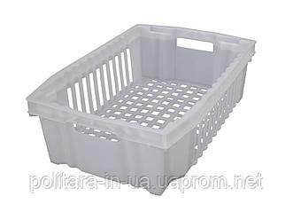 Ящик пластиковый пищевой 600x400x180 для замораживания