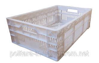 Ящик пластиковый для мяса 600х400х180