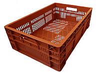 Ящик для перевозки суточных цыплят 600х400х180