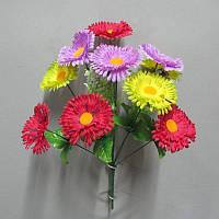 Букет Ромашка разноцвет №700