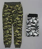 Спортивные брюки для мальчиков Seagull оптом ,116-146 pp., фото 1