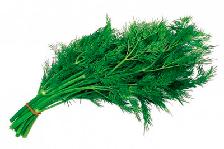 Зеленые и пряные культуры