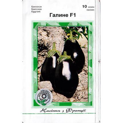 """Насіння баклажана раннього """"Галині"""" F1 (10 насінин) від Clause, Франція, фото 2"""