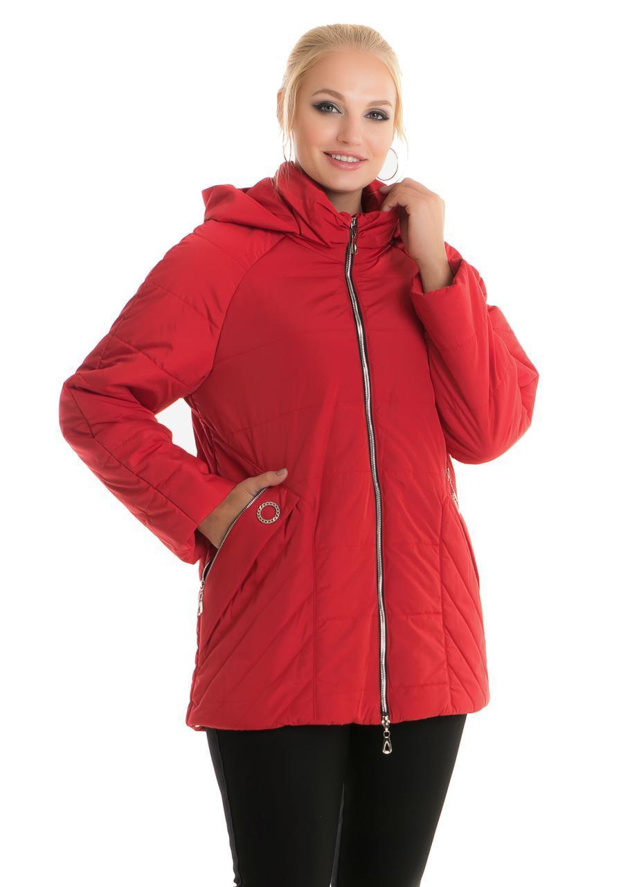 Женская куртка больших размеров 80