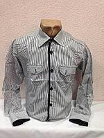 Рубашка мужская G-PORT  ХХЛ