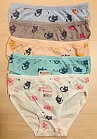 Трусики-плавки дитячі для дівчаток бавовна Donella Туреччина розмір L (5-7 років)