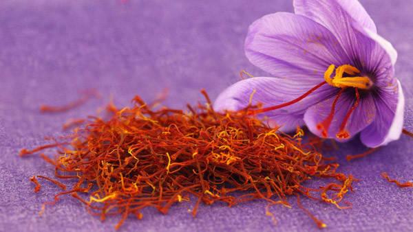 Король специй. 5 полезных свойств шафрана