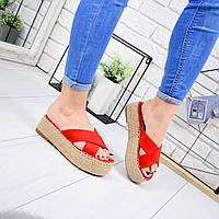 Шлепанцы женские Dany красный 6671, фото 1