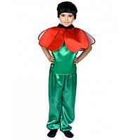 Костюм Мака для мальчика 4,5,6,7,8,9 лет. Детский карнавальный костюм на праздник Весны 341