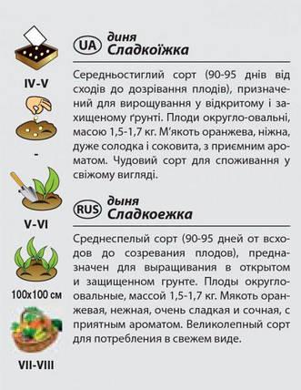 """Семена дыни среднеспелой """"Сладкоежка"""" (2 г) от Agromaksi seeds, фото 2"""