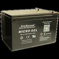 Гелевый аккумулятор EverExceed MG 12-12G