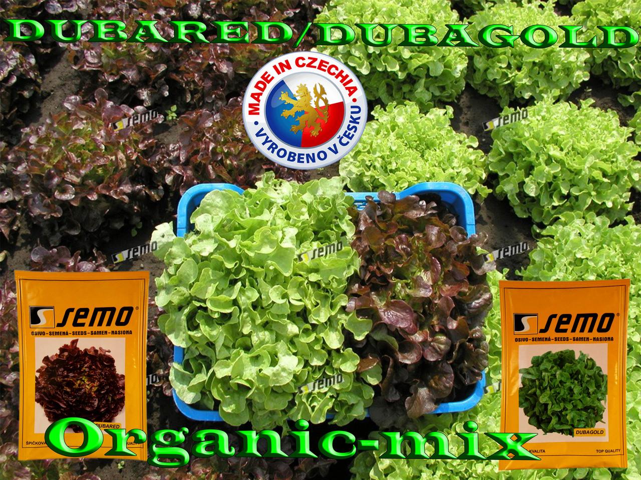 Салат дубовый красный Дубаред / Dubared, TM Semo (Чехия) Проф. фасовка 1 грамм