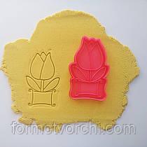 "3D формочки-вырубки для пряников ""Тюльпан 1"""