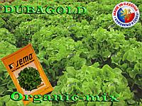 Салат дубовый зеленый Дубаголд / Dubagold, TM Semo (Чехия) Проф. фасовка 5 грамм