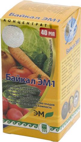 Байкал ЭМ-1, биоудобрение, фото 2