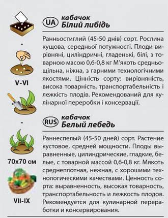 """Насіння кабачка раннього, кущового """"Білий лебідь"""" (2 р) від Agromaksi seeds, фото 2"""