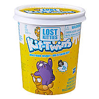 Игровой Набор Потерянный котёнок Lost Kitties Kit-Twins Toy Hasbro E5086