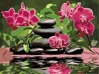 Раскраски для взрослых 40×50 см. Лиловые орхидеи , фото 1