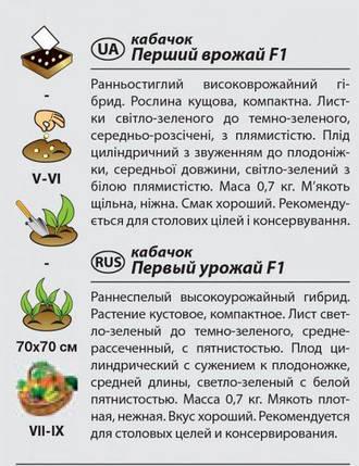 """Семена кабачка раннего, урожайного """"Первый урожай"""" F1 (1 г) от Agromaksi seeds, фото 2"""