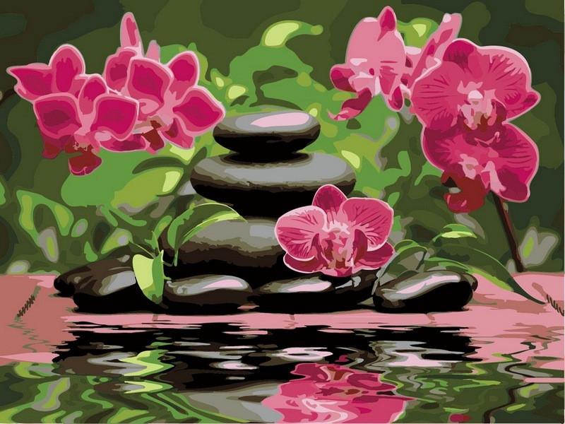 Картина по номерам 40×50 см. Лиловые орхидеи