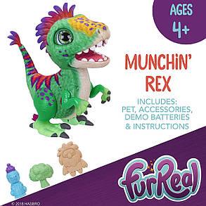 Интерактивная игрушка динозавр Рекс Фуриал Малыш Дино FurReal Friends Munchin' Rex, фото 2