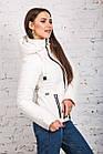 Женская куртка на весну-осень - модель 2019 - (кт-442), фото 4