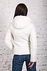 Женская куртка на весну-осень - модель 2019 - (кт-442), фото 5