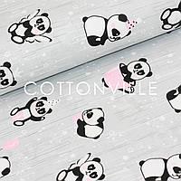 ✁ Отрезы бязи Панды в розовых чашках на сером, фото 1