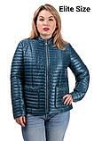 Демисезонная куртка  в большом размере  50,52,54,56, фото 3