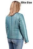Демисезонная куртка  в большом размере  50,52,54,56, фото 7