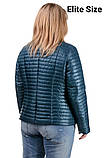 Демисезонная куртка  в большом размере  50,52,54,56, фото 4