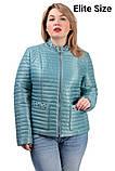 Демисезонная куртка  в большом размере  50,52,54,56, фото 6