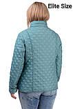 Демисезонная куртка  в большом размере 50,52,54,56, фото 2