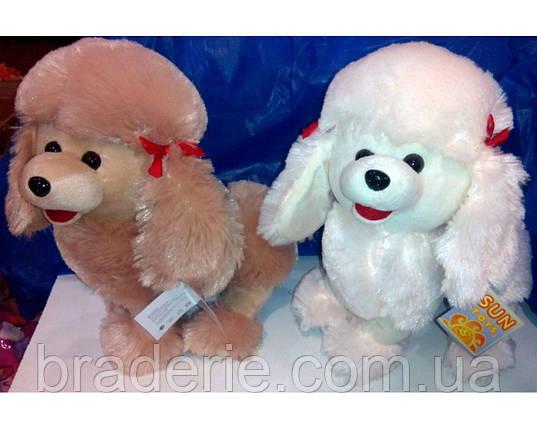 Мягкая игрушка Собака Пудель 4028-26, фото 2