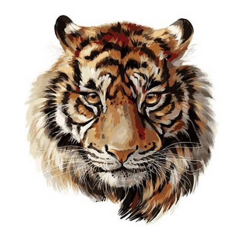 Картина по номерам Царственный тигр, 40x50 см., Babylon