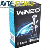 Ксеноновые лампы WINSO H4 6000K 35W (к-т 2шт) / Лампа ксенонова, фото 1