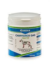 Canina Petvital Canhydrox GAG 360 tab. (Gag Forte) кормовая добавка заболеваний опорно-двигательного аппарата